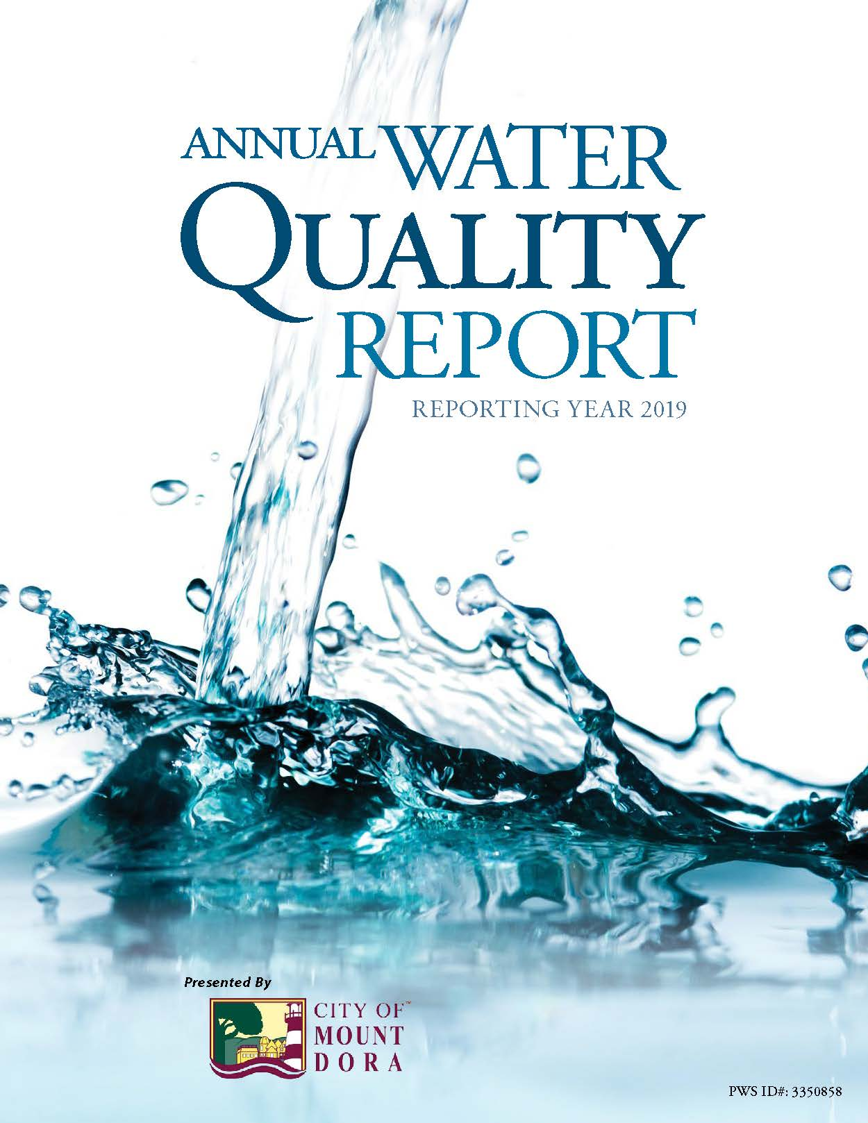 2019 Water Quality Report_Page_1