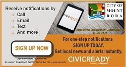 small civic ready card