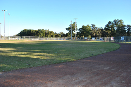Lincoln Park Baseball Outfield